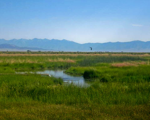 Wide open spaces and nearby mountain retreats: offering the best of both worlds