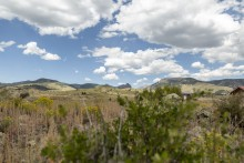 Homesites & Mining Claims For Sale