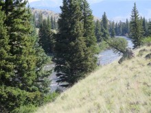 Bristol Head Homesite Bordering National Forest to the River!